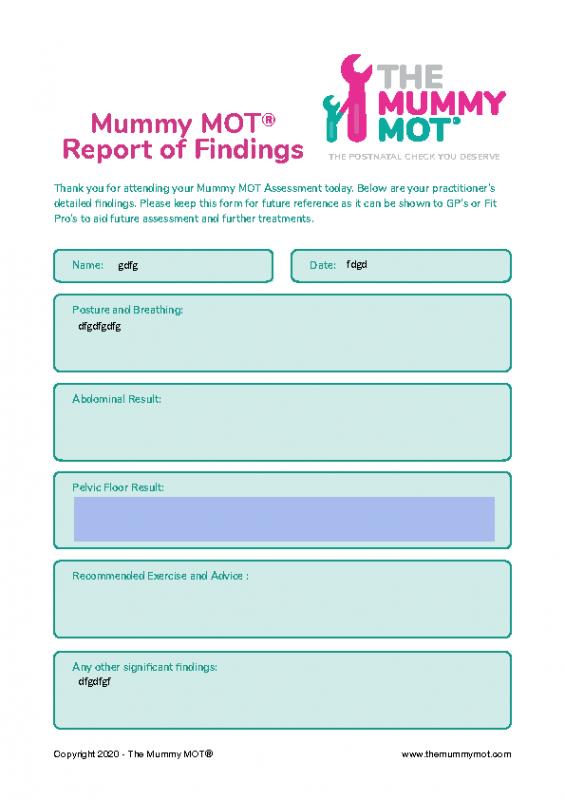 Mummy MOT® Report of Findings (Editable)